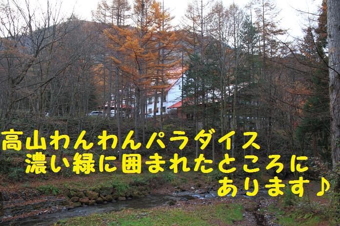 IMG_02342010.jpg