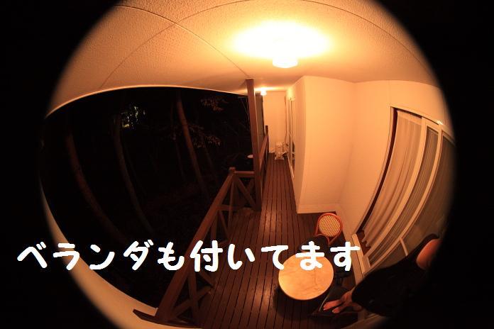 IMG_04352010.jpg