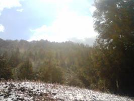 天気快晴されど雪が舞う