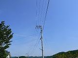 P2840386.jpg