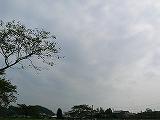 P2850374.jpg
