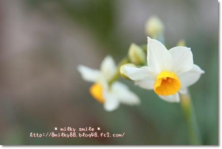 IMG_9277_20120203080938.jpeg