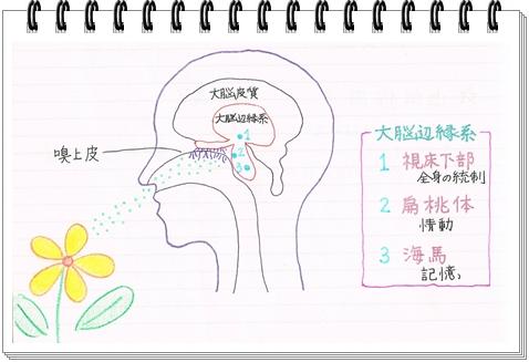 CCF20110603_000001.jpg