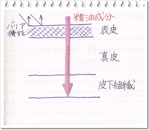CCF20110603_000002.jpg