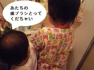 maika2306141.jpg