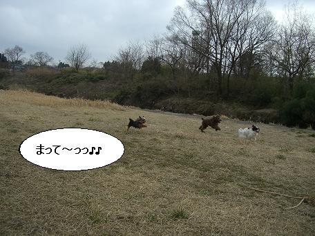 20070325001554.jpg
