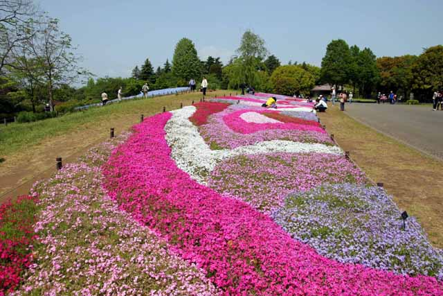 2011syoukinen8