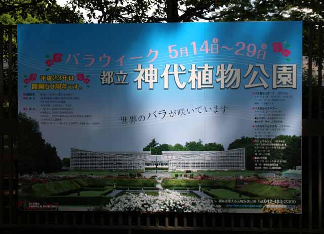 20115jindaibara1