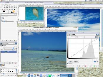gimp-edit.jpg