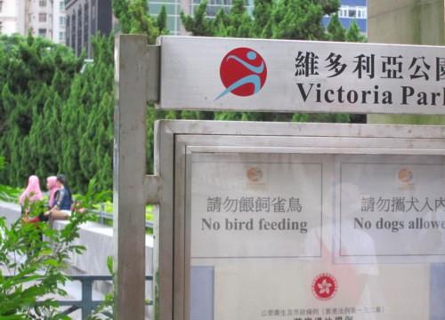 Hong Kong11091166