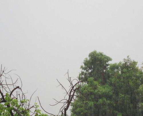 weather032412