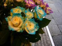 銀座の花や001