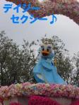 s-P1010423.jpg