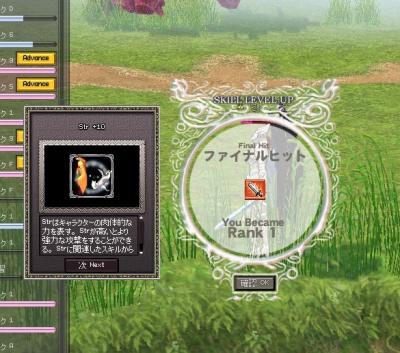 mabinogi_2007_08_28_001.jpg