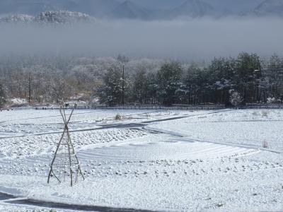 2011hatsuyuki