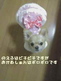 blog2007.10.18-1.jpg