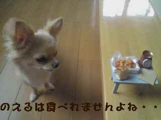 blog2007.7.13-1.jpg