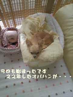 blog2007.7.5-1.jpg