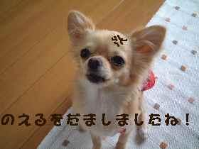 blog2007.7.9.jpg