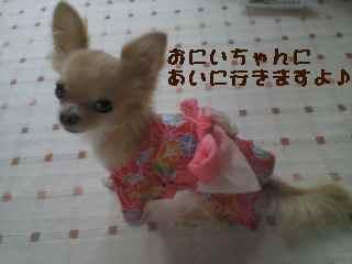 blog2007.8.2-1.jpg