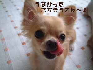 blog2007.8.24-1.jpg