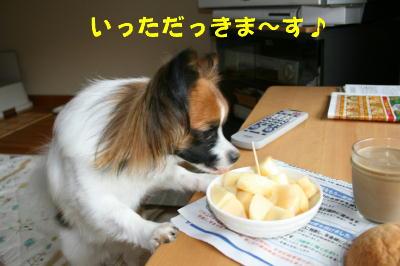IMG_0978_1.jpg