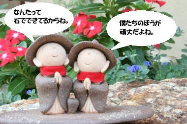 IMG_1495_1.jpg