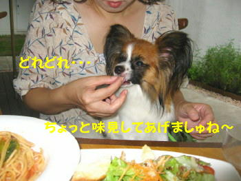 IMG_6784_1.jpg