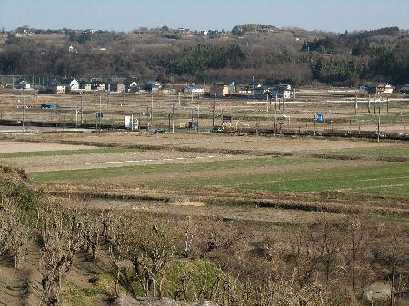 2月の田んぼ