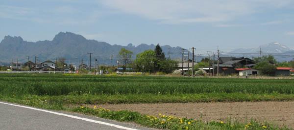 春の田んぼ
