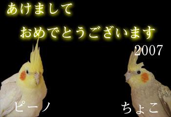 20070101.jpg