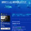 宮崎市「にしむら歯科医院」のブログ