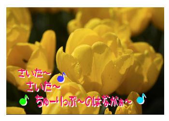 07_0903_03.jpg