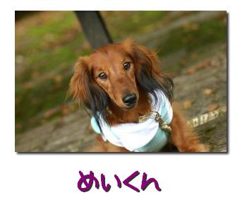 07_0927_03mei.jpg