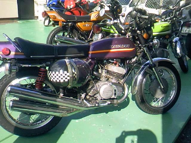 TS3I0225.jpg