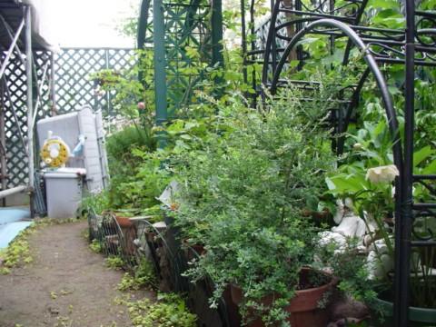 工事中の庭、北→南