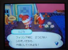 12・7 1号から写真♪2