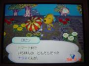 10・30 歓迎♪ロビン^^