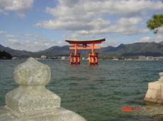 11・7 厳島神社