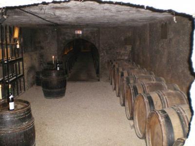 ボーヌのワインカーブ
