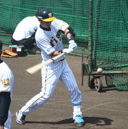 鳴尾浜27