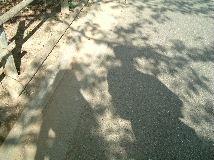 06081921.jpg