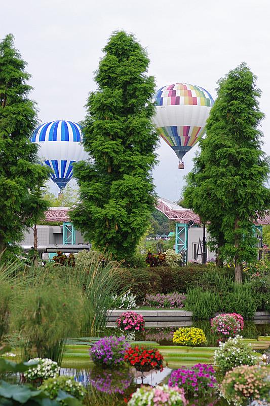上下する熱気球
