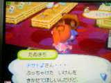 061104_2008~03.jpg
