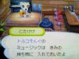 061112_0015~01.jpg