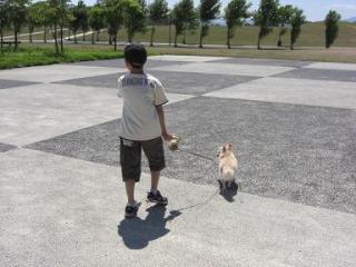 にぃたんと散歩