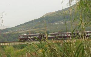 IMG_3136電車