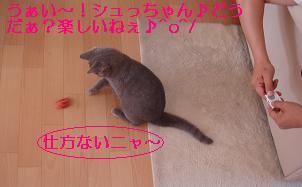 20070509101551.jpg