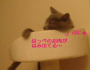20070510201731.jpg