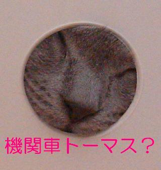 20070531211713.jpg